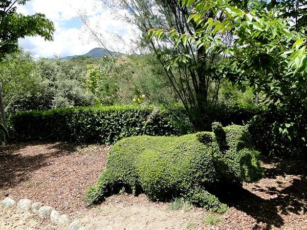 Detalle animal hecho con plantas en Bosque Encantados