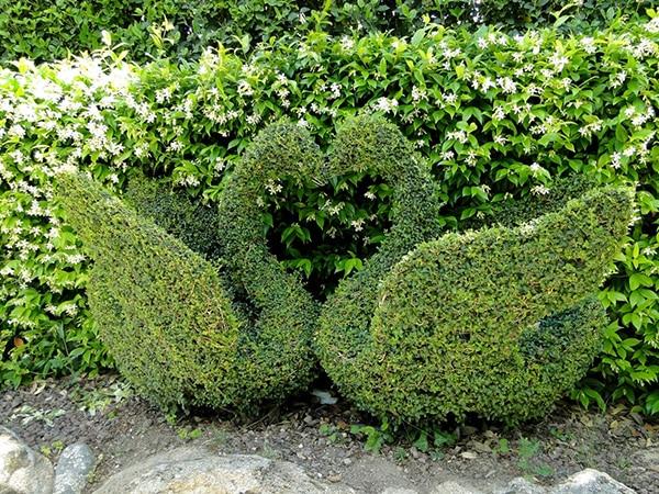 Detalle de escultura de dos cisnes hechos con plantas en el Bosque Encantado