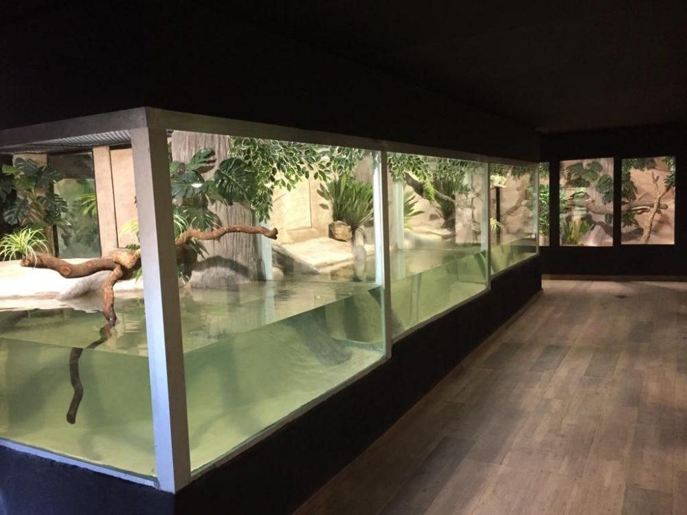 reptilario en el Safari de Madrid Aldea del fresno