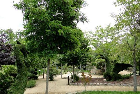 Vista general del Bosque Encantado de San MArtín de Valdeiglesias